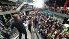 A 'conductor's eye view' of Crowd Out